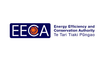 Energy Efficiency and Conservative Authority